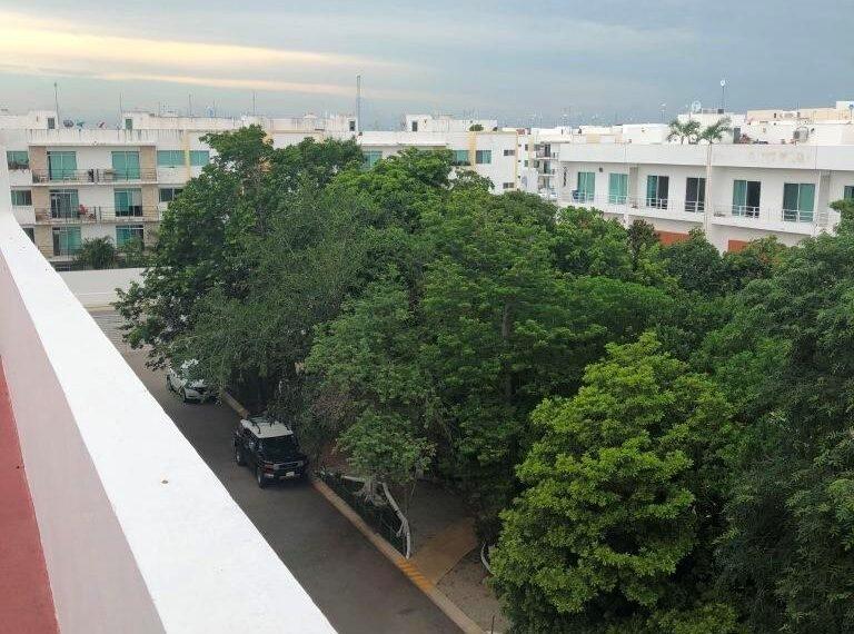terraza azotea (1)